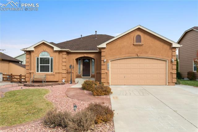 3595 Spitfire Drive, Colorado Springs, CO 80911 (#9535799) :: Harling Real Estate