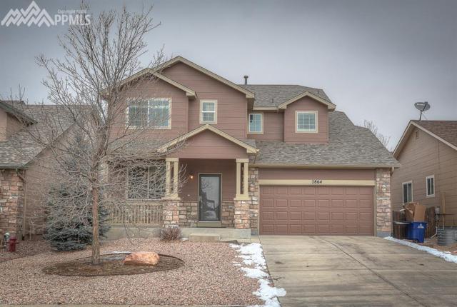 7864 February Drive, Colorado Springs, CO 80951 (#9541833) :: Jason Daniels & Associates at RE/MAX Millennium