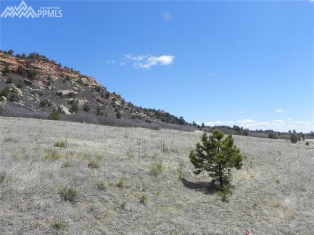 12 Carol Drive, Palmer Lake, CO 80133 (#9543829) :: Colorado Home Finder Realty