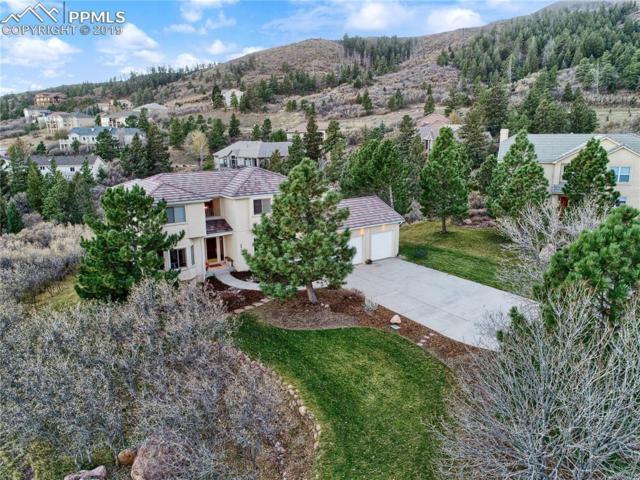 2915 Terranova Court, Colorado Springs, CO 80919 (#9545040) :: 8z Real Estate