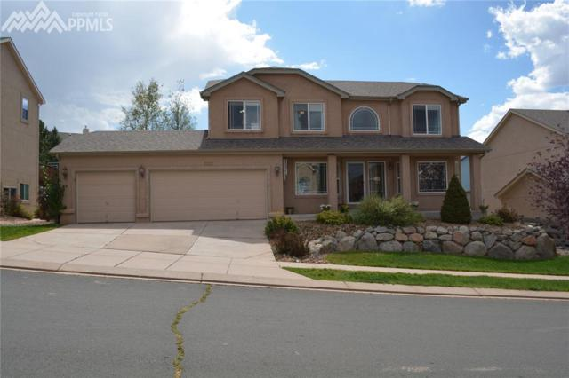 1231 Castle Hills Place, Colorado Springs, CO 80921 (#9546188) :: Action Team Realty