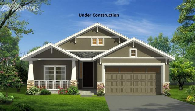 7600 Alpine Daisy Drive, Colorado Springs, CO 80925 (#9547273) :: The Peak Properties Group