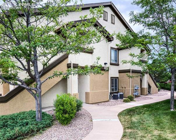 3880 Riviera Grove #203, Colorado Springs, CO 80922 (#9552216) :: CC Signature Group
