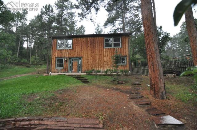 171 Shady Lane, Palmer Lake, CO 80133 (#9552703) :: The Treasure Davis Team