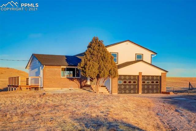 12658 Mesa View Road, Larkspur, CO 80118 (#9553093) :: Venterra Real Estate LLC