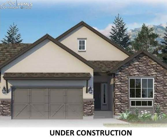 11012 Crisp Air Drive, Colorado Springs, CO 80908 (#9553993) :: The Treasure Davis Team