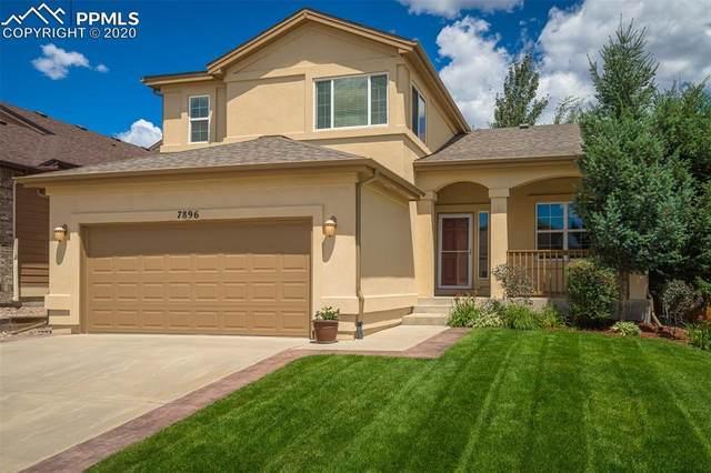 7896 Steward Lane, Colorado Springs, CO 80922 (#9555205) :: Tommy Daly Home Team