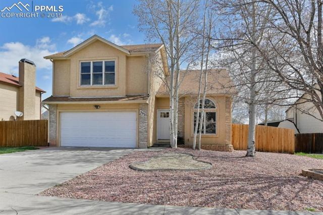 3970 Dolphin Circle, Colorado Springs, CO 80918 (#9560578) :: Tommy Daly Home Team