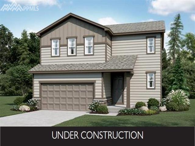 6461 Anders Ridge Lane, Colorado Springs, CO 80927 (#9561124) :: The Peak Properties Group