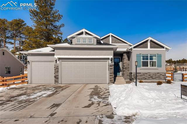 16386 Shadow Cat Place, Monument, CO 80132 (#9564064) :: Colorado Home Finder Realty