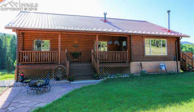 643 Divide South Drive, Divide, CO 80814 (#9565833) :: The Peak Properties Group