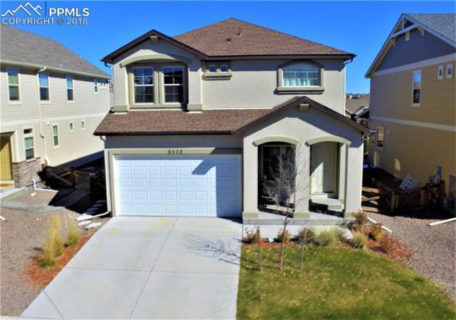 8532 Briar Brush Lane, Colorado Springs, CO 80927 (#9566966) :: Colorado Home Finder Realty