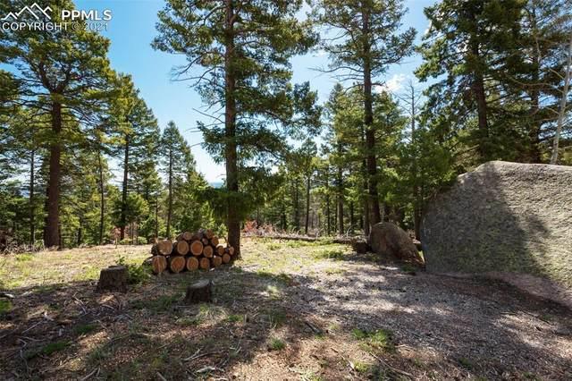 13850 Boulder Lane, Larkspur, CO 80118 (#9578317) :: Tommy Daly Home Team