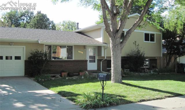 3530 Carousel Lane, Colorado Springs, CO 80917 (#9579947) :: The Peak Properties Group