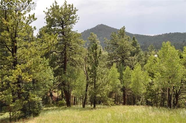 567 Idlewild Drive, Cripple Creek, CO 80813 (#9584650) :: The Treasure Davis Team | eXp Realty