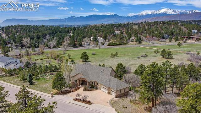 7330 Winding Oaks Drive, Colorado Springs, CO 80919 (#9585767) :: The Dixon Group