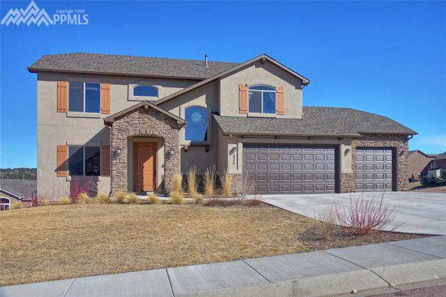 834 Woodmoor Acres Drive, Monument, CO 80132 (#9586811) :: The Treasure Davis Team