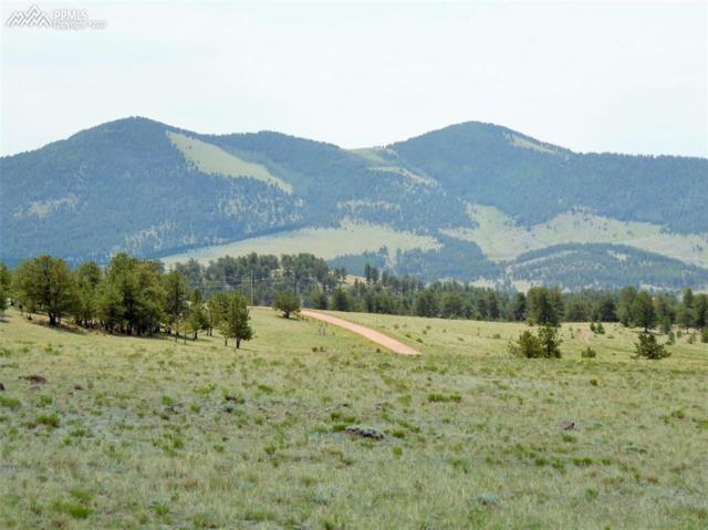 350 Old Kathleen Trail, Guffey, CO 80820 (#9588430) :: RE/MAX Advantage