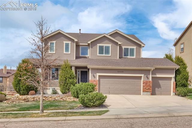 12536 Highland Oaks Place, Colorado Springs, CO 80921 (#9588954) :: Tommy Daly Home Team