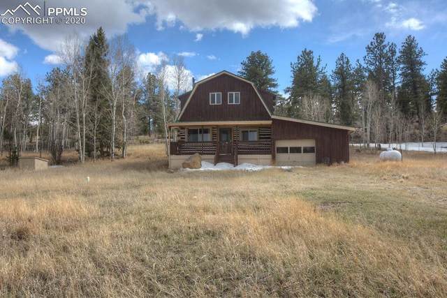 71 Bridle Lane, Florissant, CO 80816 (#9593680) :: Tommy Daly Home Team