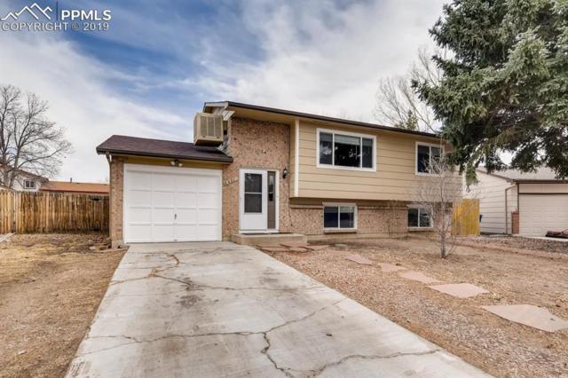 3907 Fetlock Circle, Colorado Springs, CO 80918 (#9594792) :: Jason Daniels & Associates at RE/MAX Millennium
