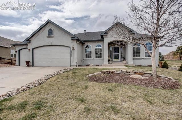 2221 Fieldcrest Drive, Colorado Springs, CO 80921 (#9596183) :: Tommy Daly Home Team