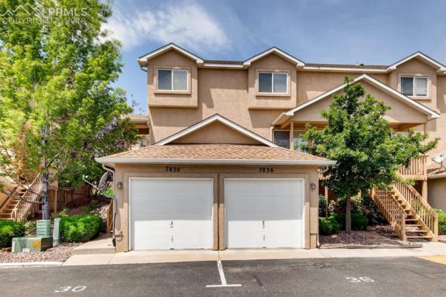 7830 Antelope Valley Point, Colorado Springs, CO 80920 (#9597469) :: The Hunstiger Team
