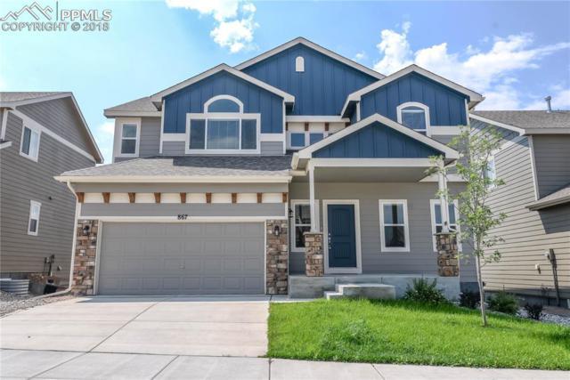 867 Salmon Pond Way, Colorado Springs, CO 80921 (#9597586) :: 8z Real Estate