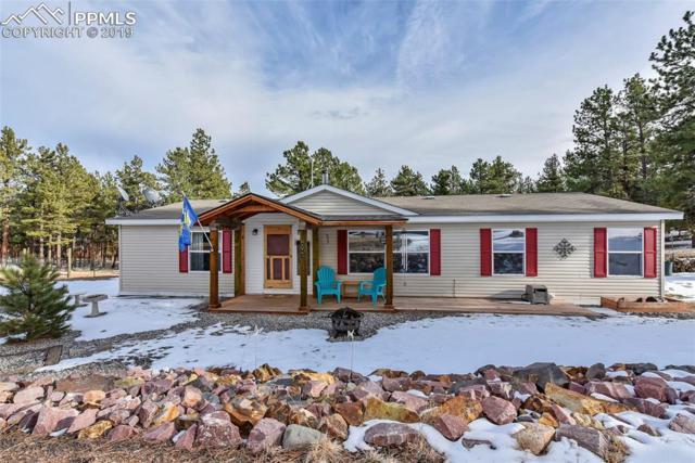 434 Blue Mountain Drive, Florissant, CO 80816 (#9598142) :: 8z Real Estate
