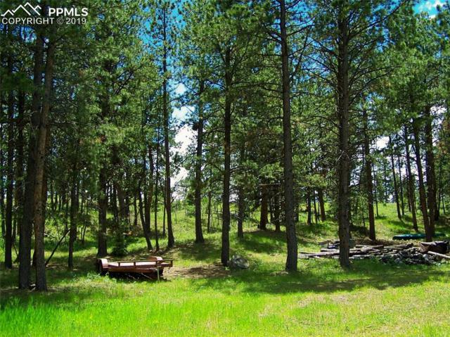 TBD Painted Rocks Road, Woodland Park, CO 80863 (#9600502) :: 8z Real Estate