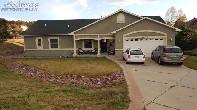 1607 Plowman Drive, Monument, CO 80132 (#9600673) :: Action Team Realty