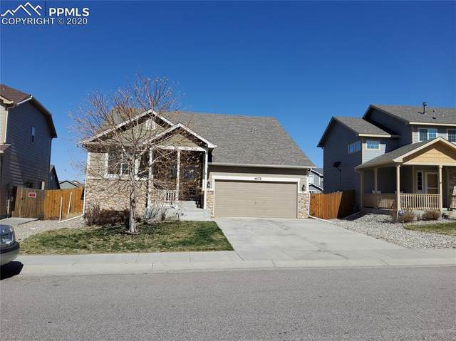 4672 Whirling Oak Way, Colorado Springs, CO 80911 (#9602133) :: Tommy Daly Home Team