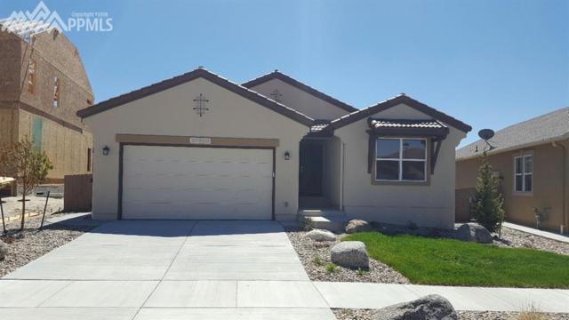 10103 Edgemont Ranch Lane, Colorado Springs, CO 80924 (#9605839) :: Fisk Team, RE/MAX Properties, Inc.