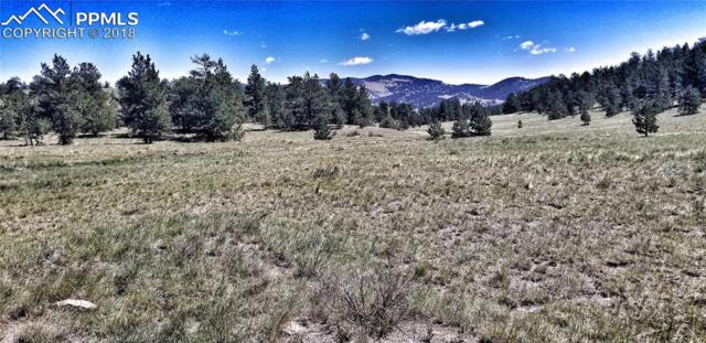 TBD Coyote Lane, Guffey, CO 80820 (#9610681) :: The Daniels Team