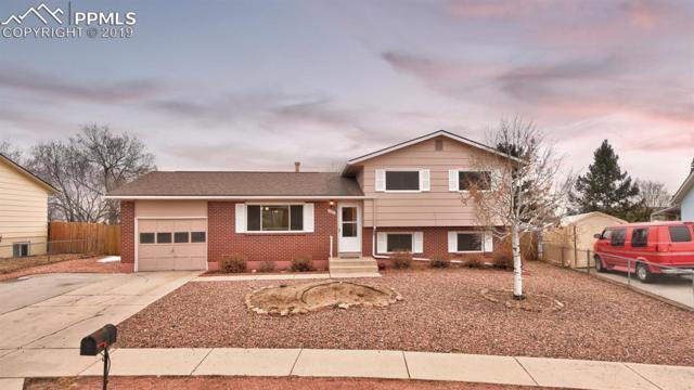 1097 Branding Iron Circle, Colorado Springs, CO 80915 (#9612282) :: Colorado Home Finder Realty