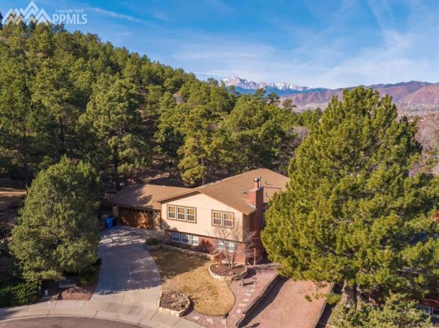 6320 Yvonne Way, Colorado Springs, CO 80918 (#9612552) :: Jason Daniels & Associates at RE/MAX Millennium