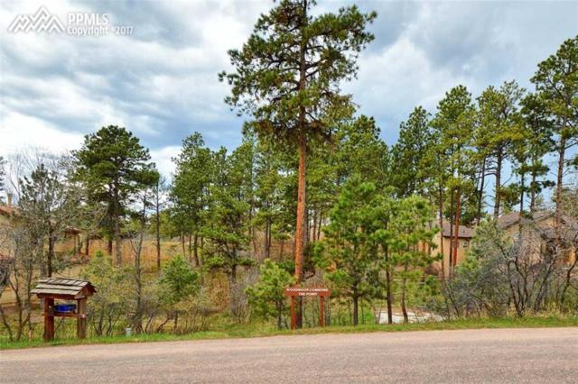 19580 Four Winds Way, Monument, CO 80132 (#9614259) :: 8z Real Estate