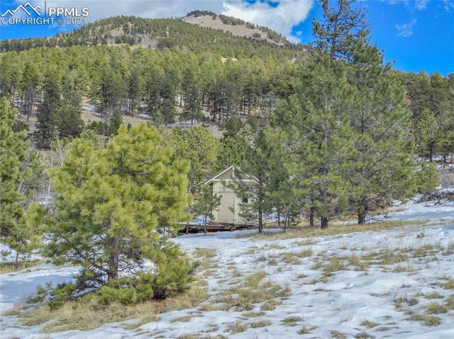 Lot 11 Spring Canyon Ranch Road, Cripple Creek, CO 80813 (#9614856) :: CC Signature Group