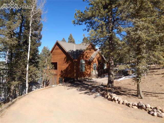 713 Spring Valley Drive, Divide, CO 80814 (#9622960) :: Colorado Home Finder Realty