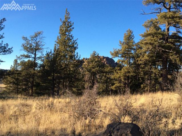 263 Apache Trail, Florissant, CO 80816 (#9623441) :: 8z Real Estate