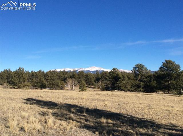 Doe Valley Road, Guffey, CO 80820 (#9623656) :: Action Team Realty