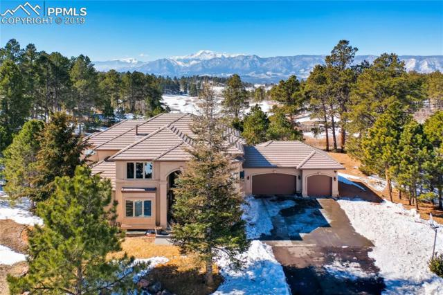 17592 Colonial Park Drive, Monument, CO 80132 (#9627544) :: Tommy Daly Home Team