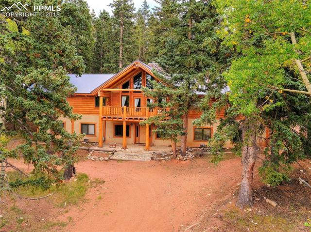 12458 S Highway 67 Highway, Cripple Creek, CO 80813 (#9629917) :: Jason Daniels & Associates at RE/MAX Millennium