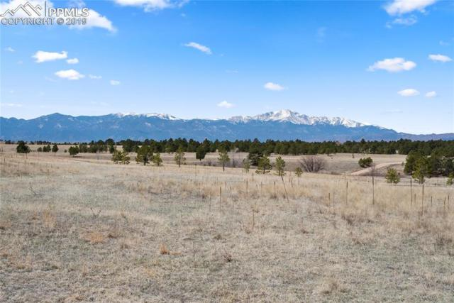 9064 Nature Refuge Way, Colorado Springs, CO 80908 (#9630999) :: Perfect Properties powered by HomeTrackR