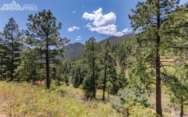 1352 Upper Sun Valley Lane, Manitou Springs, CO 80829 (#9640176) :: Action Team Realty