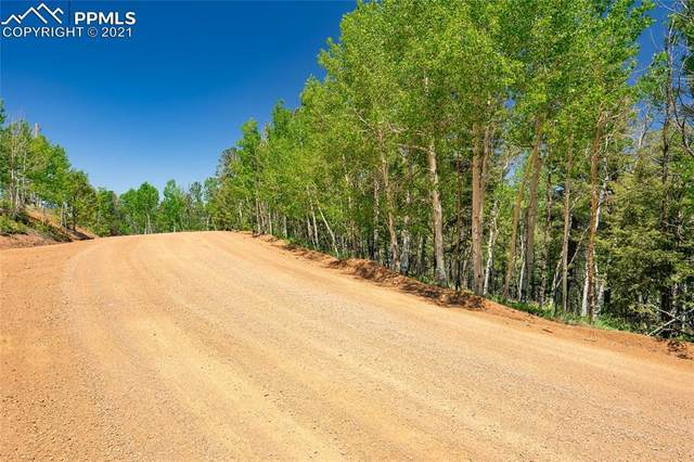 917 Princess Road, Cripple Creek, CO 80813 (#9641886) :: Tommy Daly Home Team