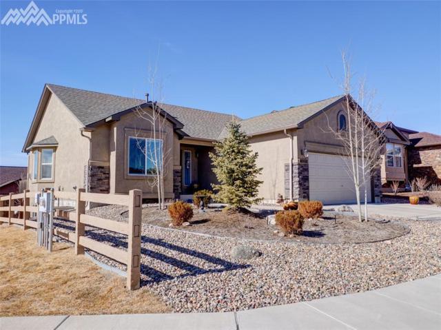 6552 Sawbuck Road, Colorado Springs, CO 80923 (#9644739) :: 8z Real Estate