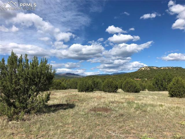 0 Red Creek Springs Road, Pueblo, CO 81005 (#9646758) :: 8z Real Estate