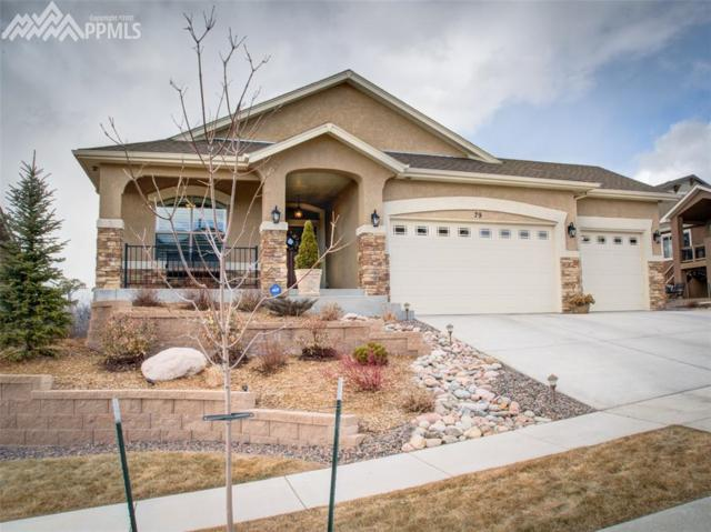 79 Coyote Willow Drive, Colorado Springs, CO 80921 (#9648366) :: Action Team Realty