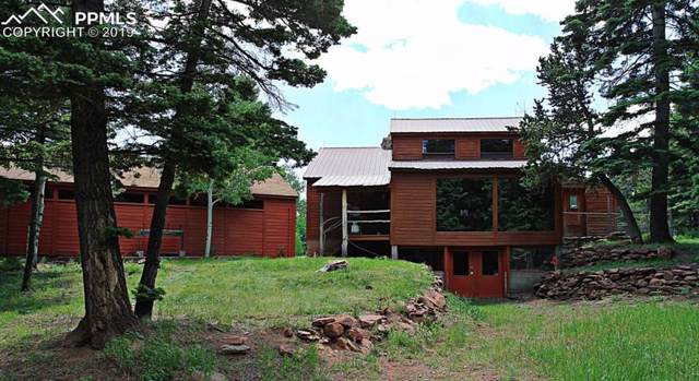 96 Houchin Boulevard, La Veta, CO 81055 (#9650687) :: The Daniels Team